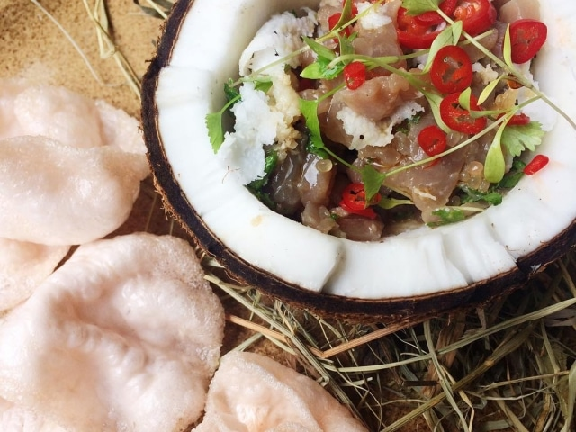 Tuna Ceviche in Kokosnuss im The Halia at Singapore Botanic Gardens