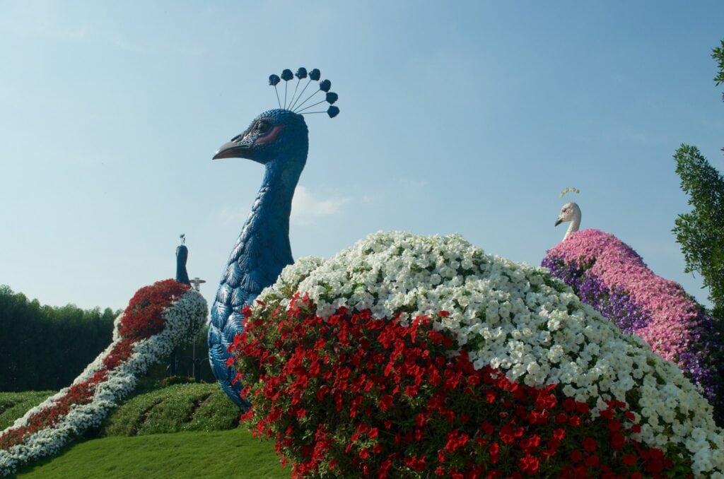 Blumenskulpturen im Miracle Garden in Dubai