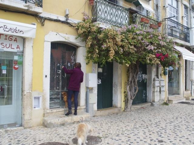 Häuserfassaden in Belém