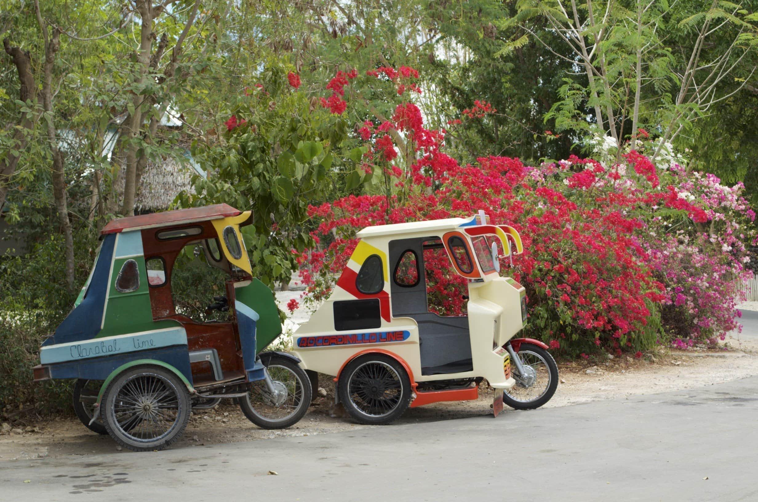 Tricycles vor bunten Blumen
