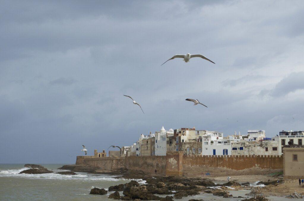 Blick auf die Medina vom Hafen in Essaouira