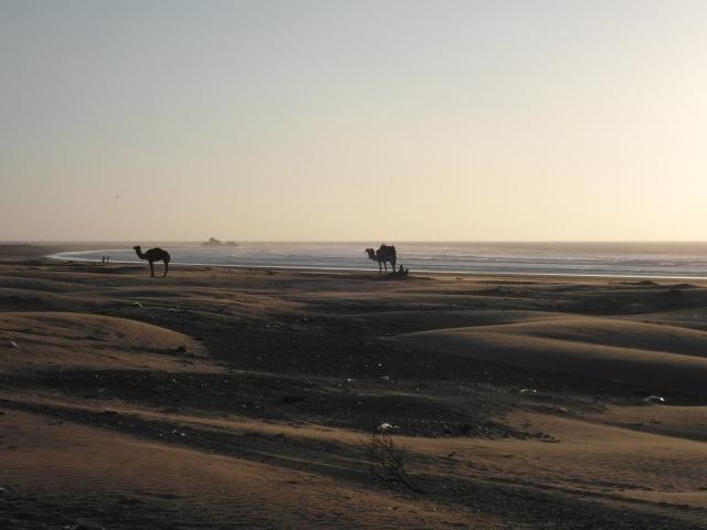 Abendstimmung am Strand von Essaouira