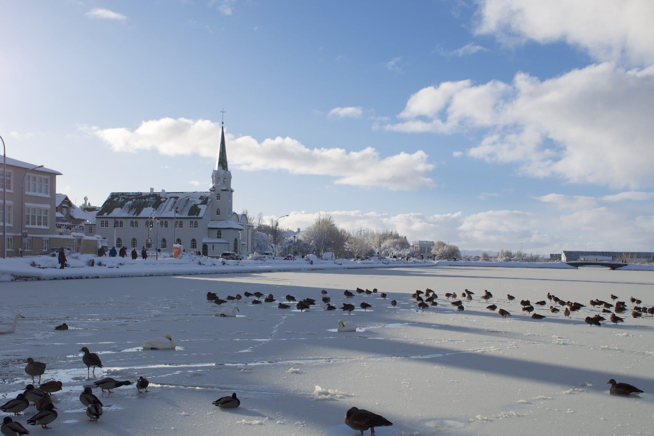 Reykjavik und der Tjörnin im Winter