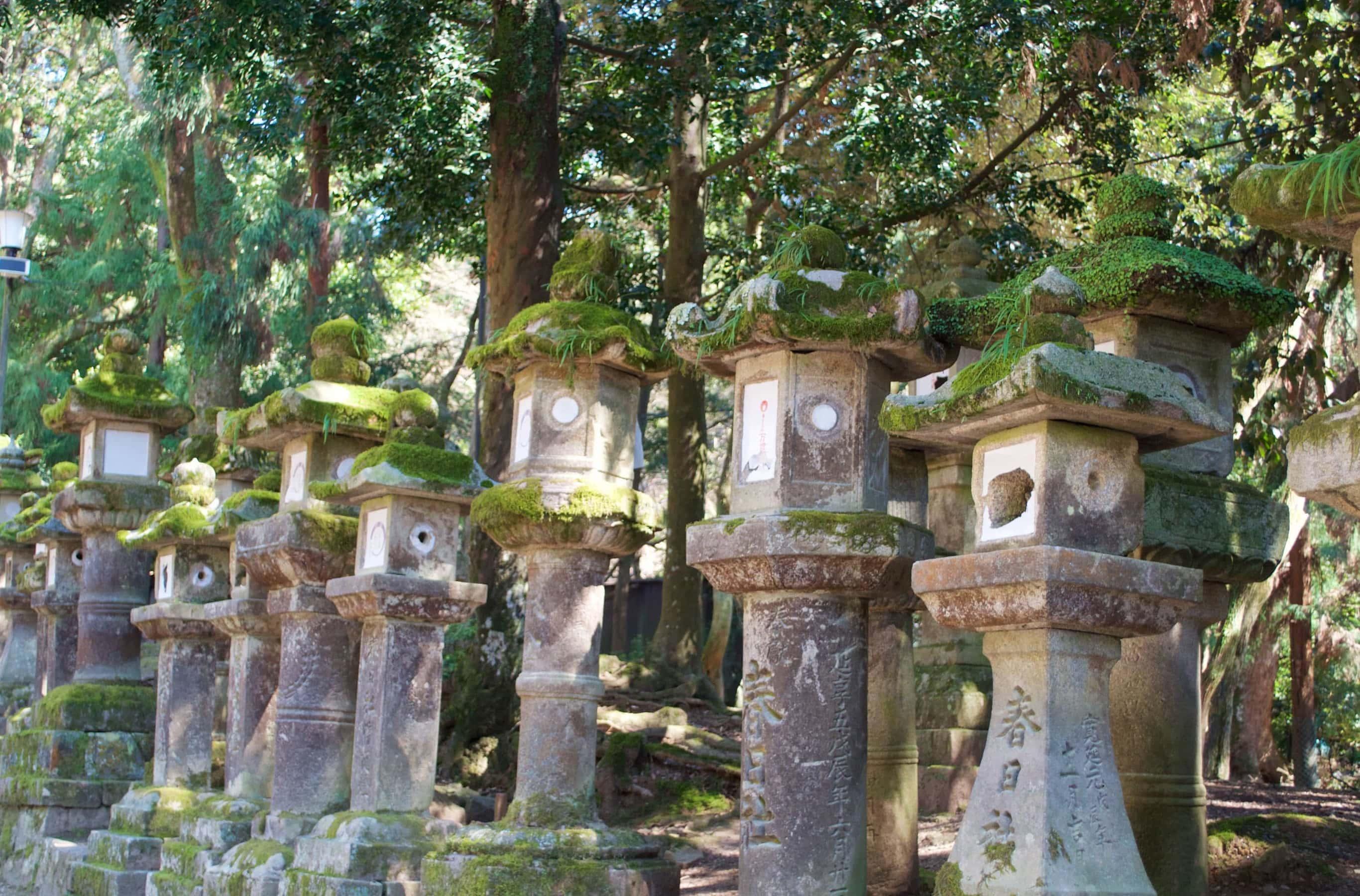 Steinlaternen auf dem Weg zum Kasuga Schrein in Nara