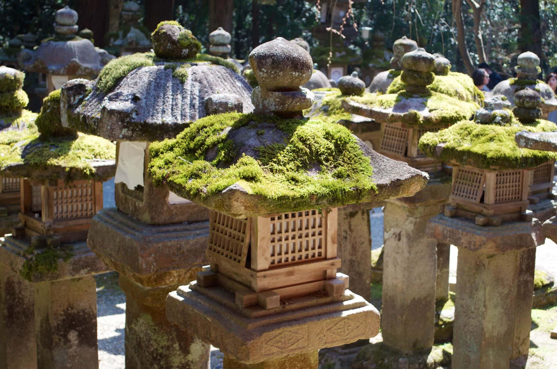 Steinlaternen vor dem Kasuga Schrein in Nara