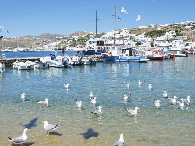 alter Hafen von Mykonos
