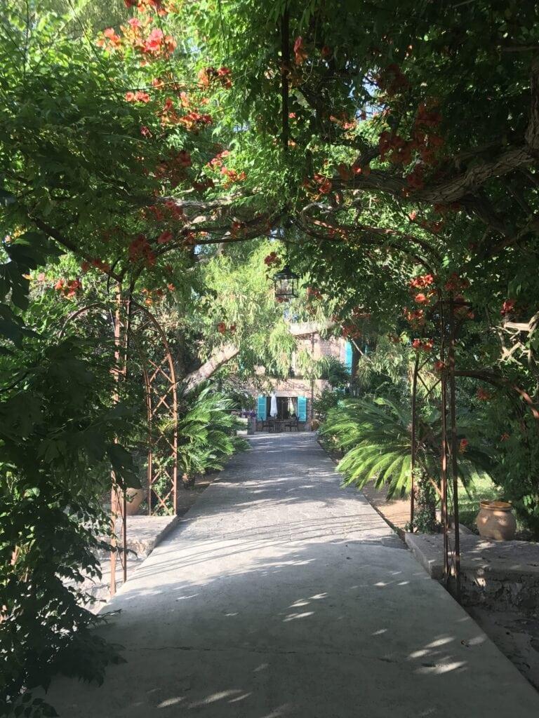 Zugang Finca Cas Sant Sóller Mallorca