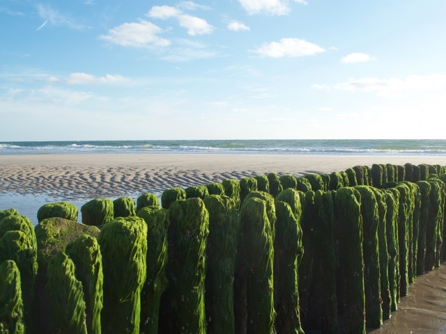 Ebbe am Strand von Westerland Sylt