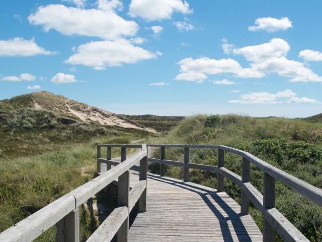 Auf dem Weg durch die Dünen zum Strand bei Kampen