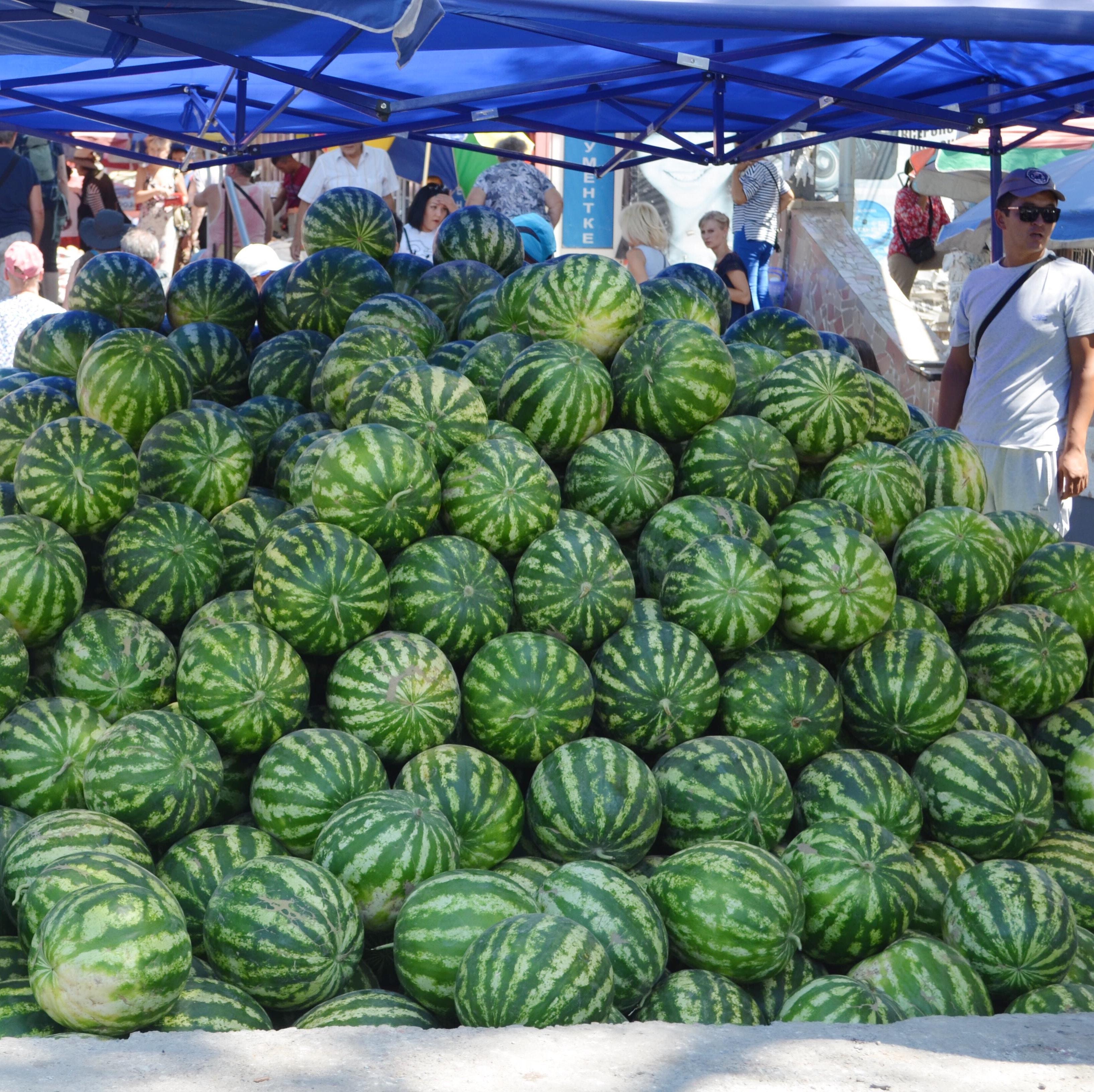 Melonen auf kirgisischen Märkten