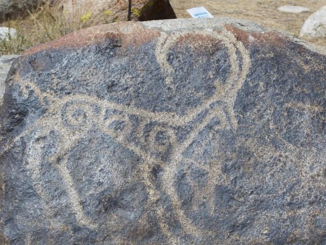 Kirgisistan Petroglyphen Issyk-Kul