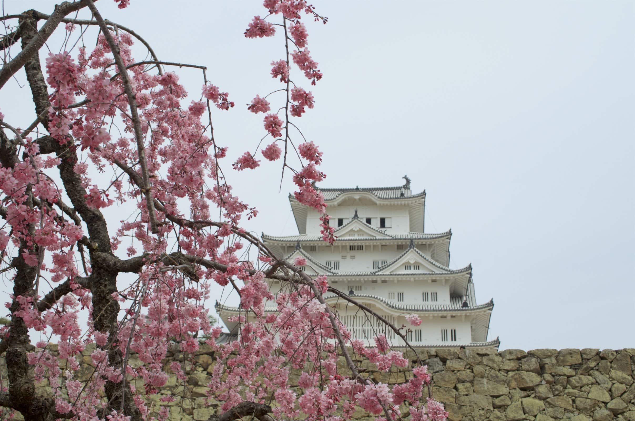 Reisemomente 2017 Himeji Castle Japan