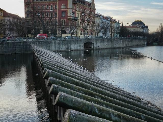 Fotospot in Prag: das Wehr beim Smetana Museum