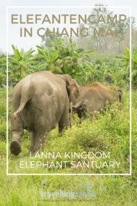 Elefantencamp in Chiang Mai, das Lanna Kigdom Elephant Santuary