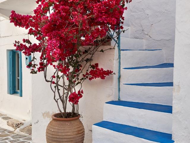 typisch griechische Treppen in Plaka Milos