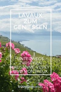 Weinterrassen von Lavaux am Genfersee