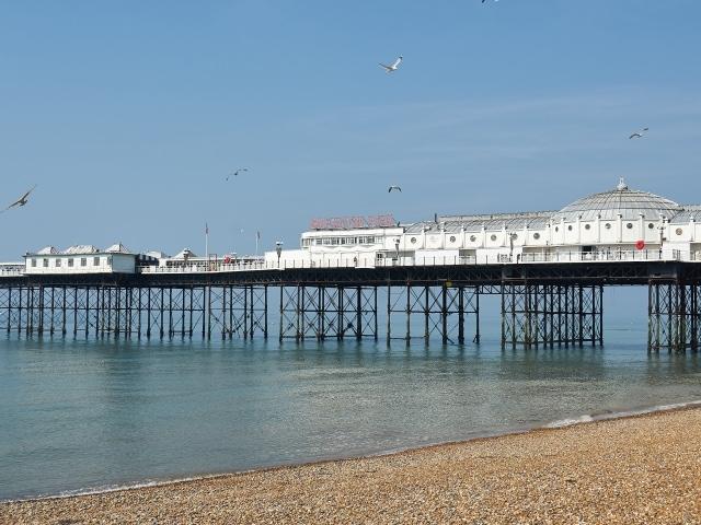 Brighton Strand und Palace Pier mit Möwen