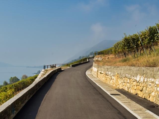 Rebenweg oberhalb des Bielersees