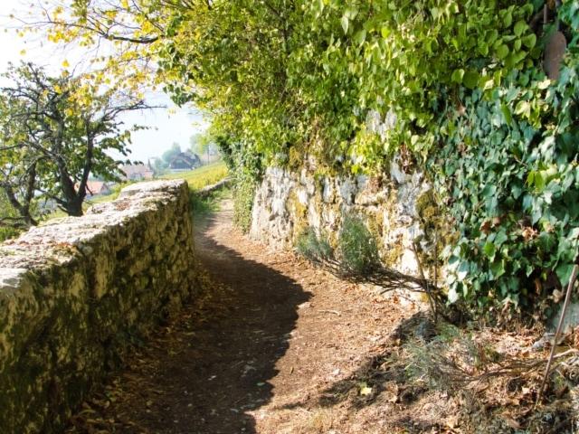 Wanderweg bei Ligerz