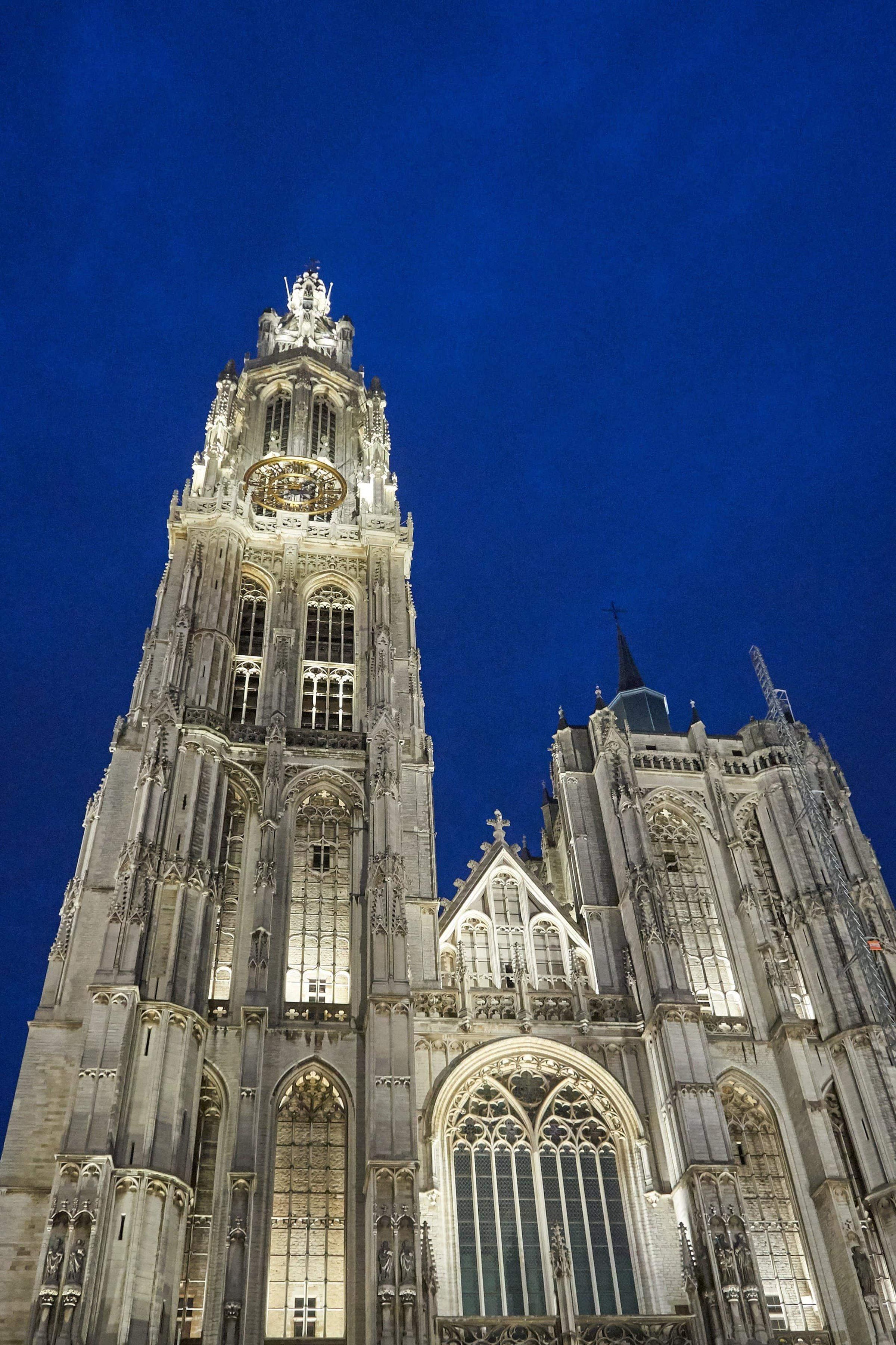 Kathedrale in Antwerpen bei Nacht