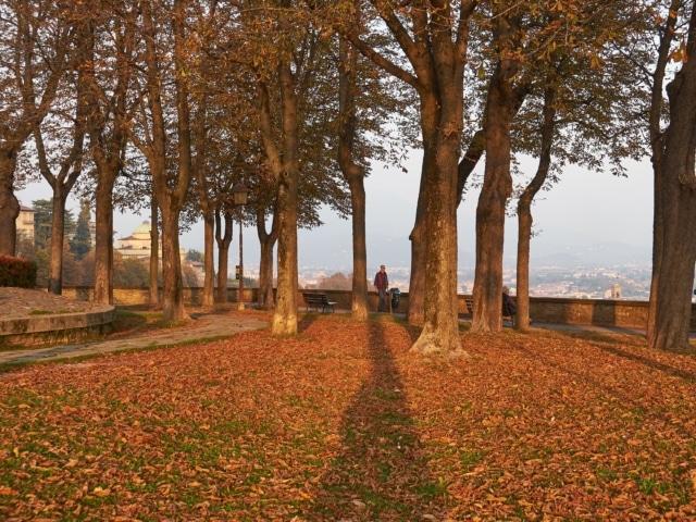 Park mit Herbstlaub an der Stadtmauer in Bergamo
