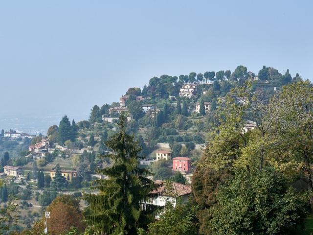 Hügel mit Pinien und Zypressen rund um Bergamo