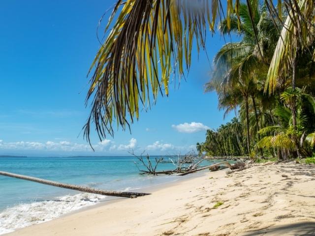 Strand auf Cayos Zapatilla