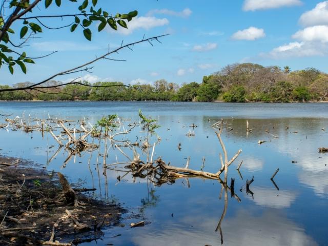 Lagune von Charco Verde