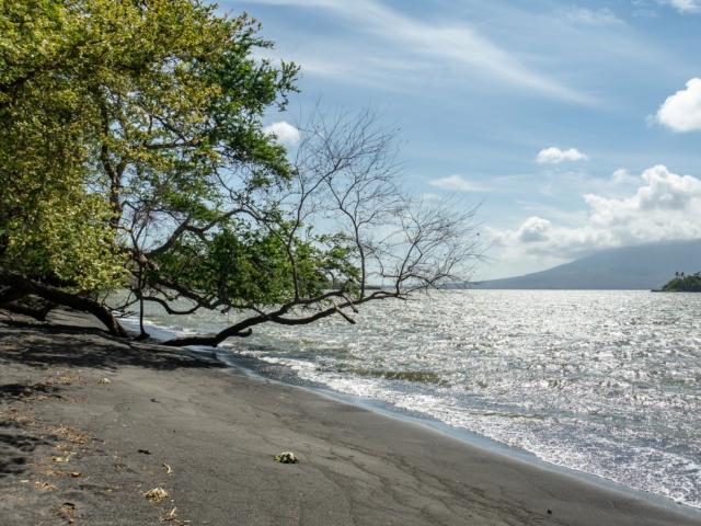 Strand im Bioreservat von Charco Verde