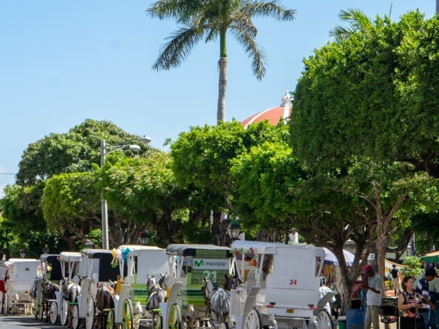 Nicaraguas Kolonialschätze: Kutschen in Granada